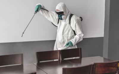 Desinfecta tu espacio de trabajo con Servinalopó