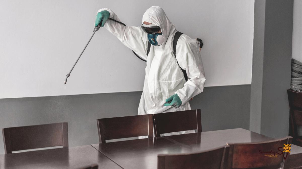 Desinfección de restaurantes en Elda y Petrer